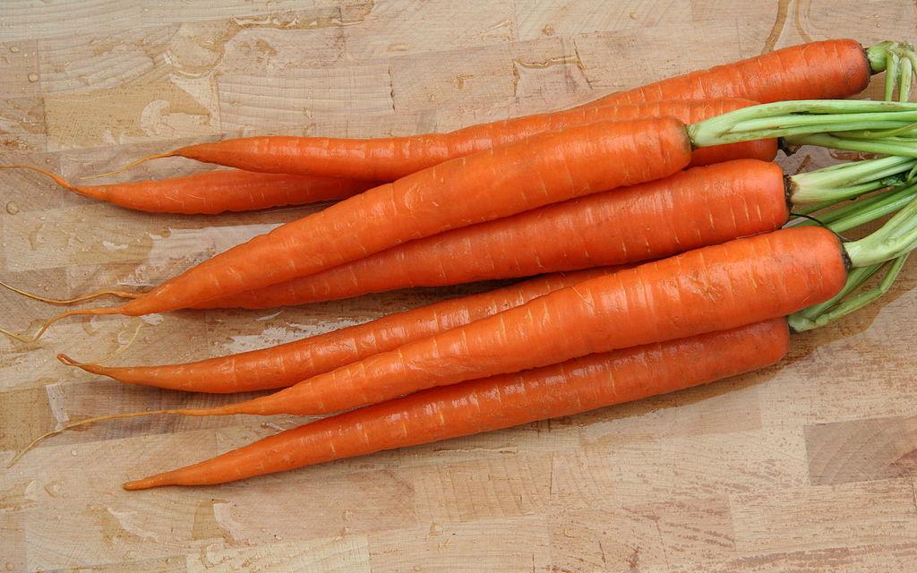 "Wortel Oranye. Sumber foto : ""CarrotRoots"" by Jonathunder, Wikimedia"